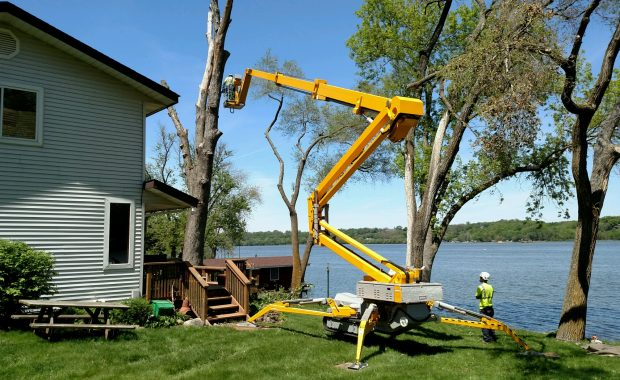 Safe Tree Removal When Close to the Home